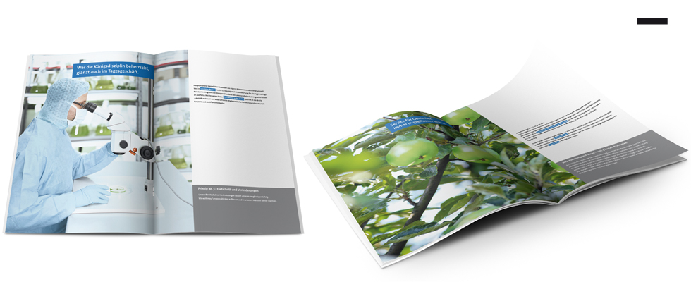 hectas_brochure_1